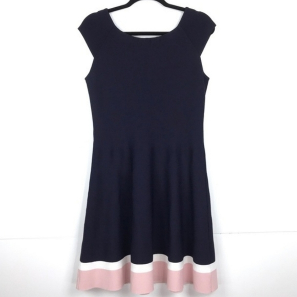 Eliza J Fit & Flare Stretch Knit Dress Navy & Pink